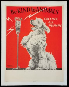 Be Kind to Animals- Calling All Humans
