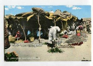 3116833 Sudan OMDURMAN Vegetable Sellers Karakashian Bros photo