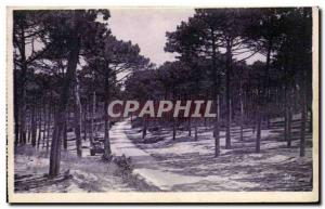 The Moulleau Old Postcard Route Corniche The Abatilles
