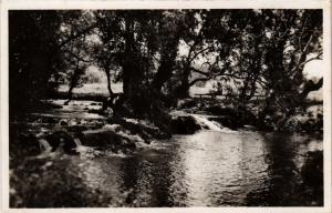 CPA Ifrane Oued bordé d'arbres MAROC (689569)
