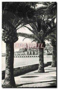 Old Postcard Menton Garavan The View From Priee