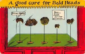 Comic~Good Cure For Bald Heads~Toupee Wigs on Stands in Window~Not Dog Hair~1909