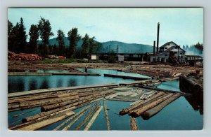 Tacoma WA- Washington, Typical Saw Mill and Log Pond, Chrome Postcard