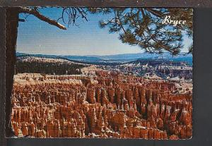 Bryce Canyon National Park UT Postcard BIN