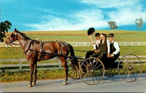 The Amish Courting Buggy