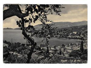 Italy Riviera Rapallo From the Olive Trees Harbor Port Glossy Photo 4X6 Postcard