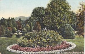 Garden, Scene In Seneca Park, Rochester, New York, 1900-1910s