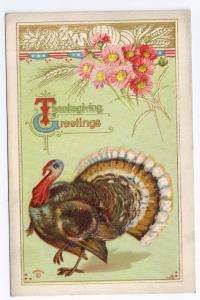 Thanksgiving Greetings Turkey Flower Wheat Vntg 1911 Embossed P Sander Postcard