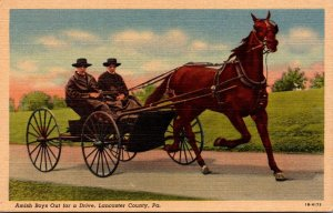 Pennsylvania Lancaster County Amish Boys Out For A Drive Curteich