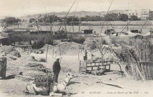 ASSUAN , Egypt , 00-10s ; Bank of the Nile