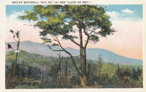NORTH CAROLINA, 1900-1910s; Mount Mitchell, 6711 Ft. In The Land Of Sky