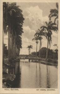 suriname, Nickerie, The Canal (1910s) Postcard