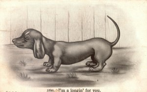 Vintage Postcard 1913 I'm a Longin for You Small Dog Pub. H.H.T.