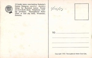 Winchester Kentucky Thoroughbred Motor Courts Vintage Postcard AA39805