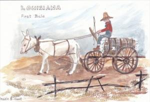 Louisiana The First Bale by Mable G Hust
