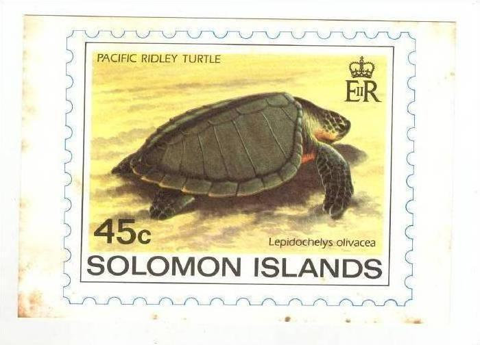 Solomon Islands Stamp postcard, Pacific Ridley Turtle, 1983
