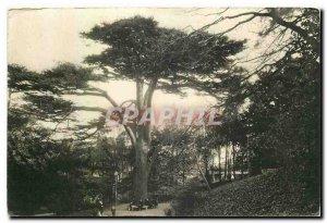 CARTE Postale Old National Museum of Natural History Jardin des Plantes Labyr...
