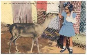 Girl Pets Deer,Childrens Zoo,Mill Mtn,Roanoke,VA,30-40s