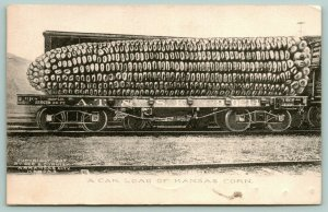 Clearwater KS~Car Load Exaggerated Kansas Corn~Brother Will Hope to Fred~1907