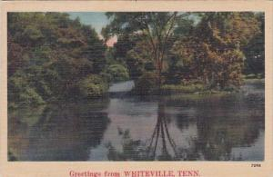 Tennessee Whiteville Greetings From Whiteville 1946