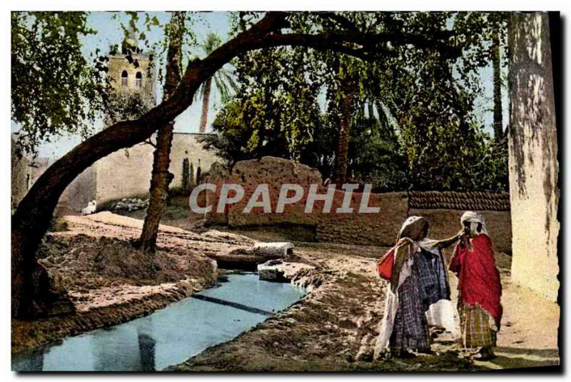 Modern Postcard Scenes Types D & # 39Afrique North Along the & # 39Oued