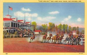 Race Track in Hot Springs Horse Racing, Trotter, Trotters, Postcard 1951