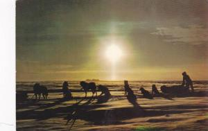 Trapper & dog team pause on trail beneath Artic Sun , Canada , 1980