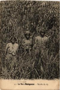 CPA Récolte du riz. MADAGASCAR (626111)
