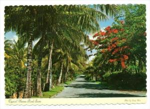 Road Scene , Nassau, Bahamas, 60-70s