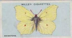 Wills Vintage Cigarette Card British Butterflies No. 12 Brimstone 1927