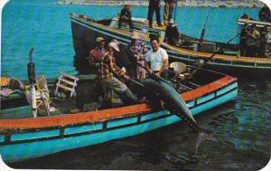 Canada Nova Scotia Wedgeport Boating A Bluefin Tuna