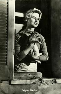 French Actress Brigitte Bardot with Cat (1960s) Real Photo