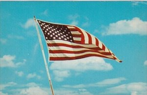 50 Star Flag Of The United States