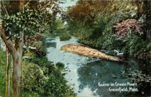 Greenfield Massachusetts~Green River Scene~Tree Closeup~c1914 Postcard