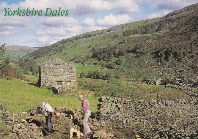 Yorkshire Workers Farming Digging Renovating Farm Wall Postcard