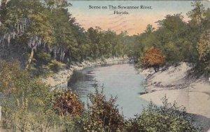 Florida Scene On the Suwannee River 1913