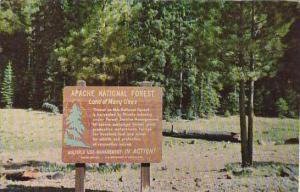 Arizona Apache National Forest