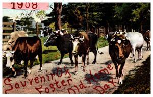 Rhode Island  Foster Center , 1908 Souvenir Foster Home Old Home day , Cows ,...