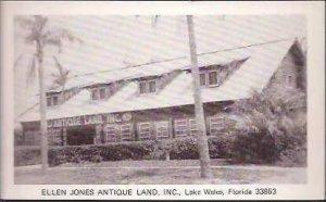 FL Lake Wales Ellen Jones Antique Land
