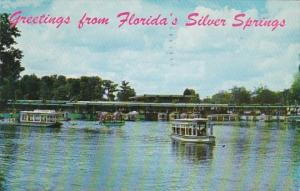 Florida Greetings From Silver Springs Boat Docks and Glass Bottom Boats 1960