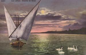 Swans, Coucher De Soleil, LAC LEMAN, Switzerland, 1900-1910s