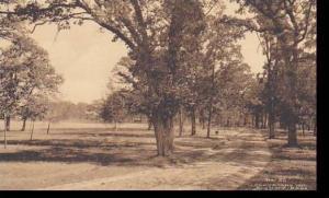 Wisconsin Fort Atkinson A Drive Thru City Park Albertype