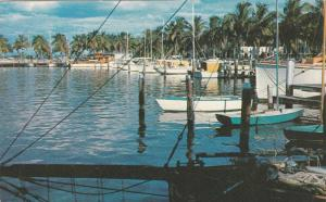 Yacht Basin , Ft Myers , Florida , PU-1965