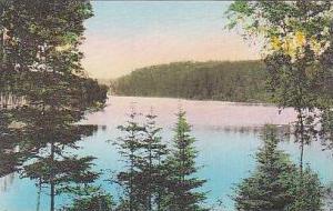 Minnesota Itasca State Park East Arm Lake Itasca Albertype