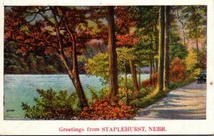 Nebraska Greetings From Staplehurst 1927