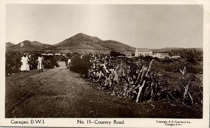 curacao, D.W.I., Country Road (1920s) Capriles  RPPC 15