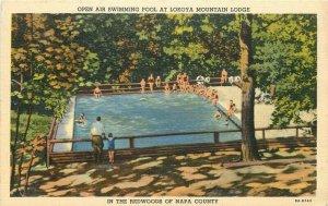 Napa California 1940s Swimming Pool Lokoya Lodge Redwoods Postcard 21-9622