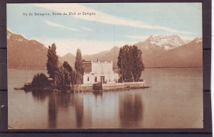 P1456 old unused postcard ile de salagnon dents du midi et catogne switzerland