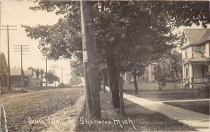 Sherwood Michigan~South Main Street~Residential Area~c1910 RPPC