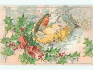 Divided-Back CHRISTMAS BIRDS SCENE Pretty Postcard W8498